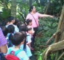 kids are fascinated by the trees