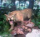 tigers used to roam bukit timah!